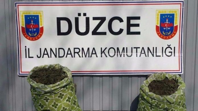 Düzce'de Jandarmadan Silah Ve Uyuşturucu Baskını