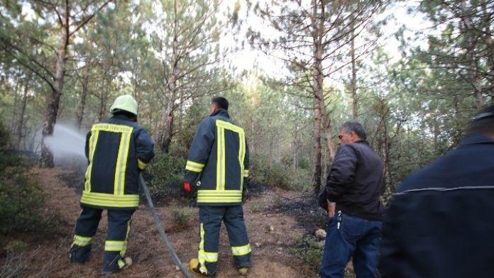 Beyşehir'de Ormanlık Alanda Çıkan Yangın Büyümeden Söndürüldü