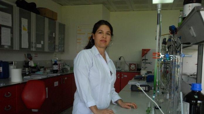 MEÜ Öğretim Üyesi Doç. Ocakoğlu'na 'Genç Bilim Kadını Ödülü'