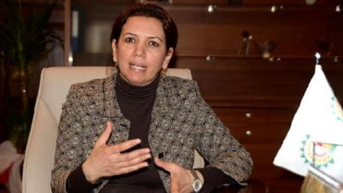 HDP'li Irmak; 'Dokunulmazlıkları kaldırarak 1925'i tekrarlamak istiyorlar'