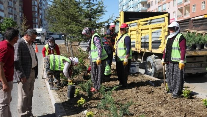 Seydişehir Belediyesi, Caddelerini Güzelleştiriyor