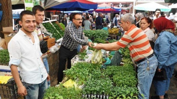 Ödemiş'te Sebze Fidanı Satışı Başladı