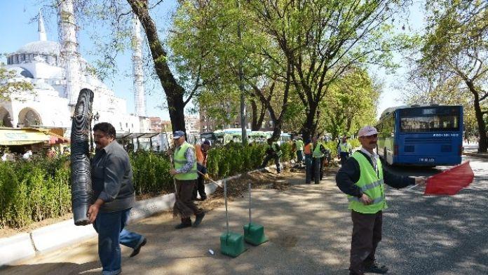 Atatürk Bulvarı, Artık Daha Yeşil