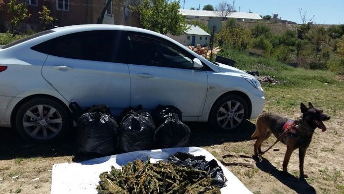 Jandarmadan kaçan araçta 50 kilo esrar ele geçirildi