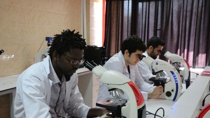 BEÜ Tıp Fakültesi Multidisiplin Laboratuvarlarına Önemli Yatırım