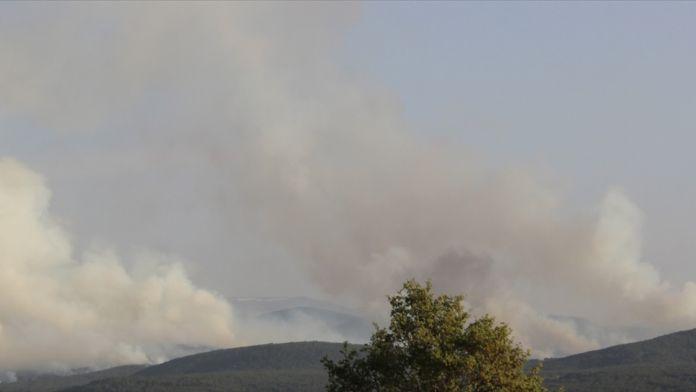 Balıkesir'deki orman yangını