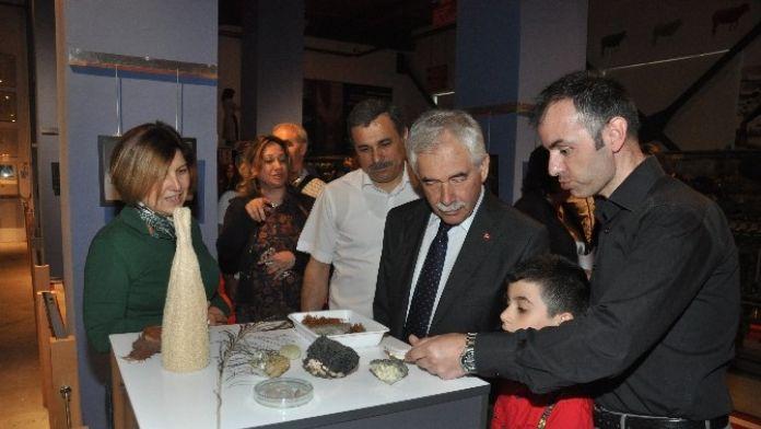 Tekstil Sanayi Müzesi'nde Doğanın Güzellikleri Fotoğraf Sergisi