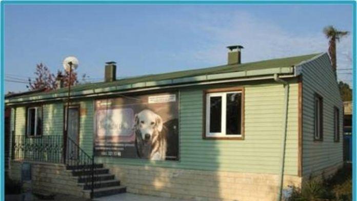 Sokak Hayvanları Geçici Bakım Evi Çalışma Yönetmeliği Hazırladı