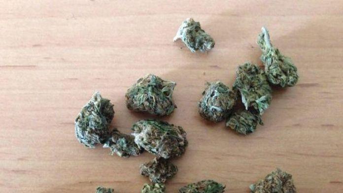 Çorlu'da 'yeşil kokain' ele geçirildi