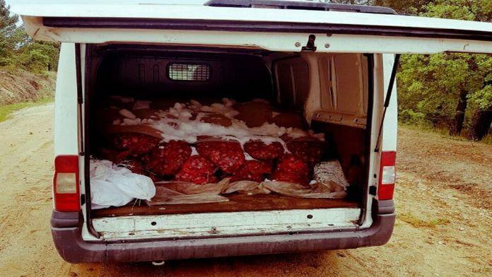 1 ton 825 kilogram canlı midye !