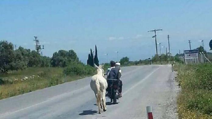 Motosiklete bağladıkları ata karayolunda eziyet