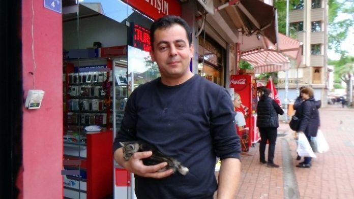 Çatıda Mahsur Kalan Kedi, Esnafların Yardımı İle Kurtarıldı