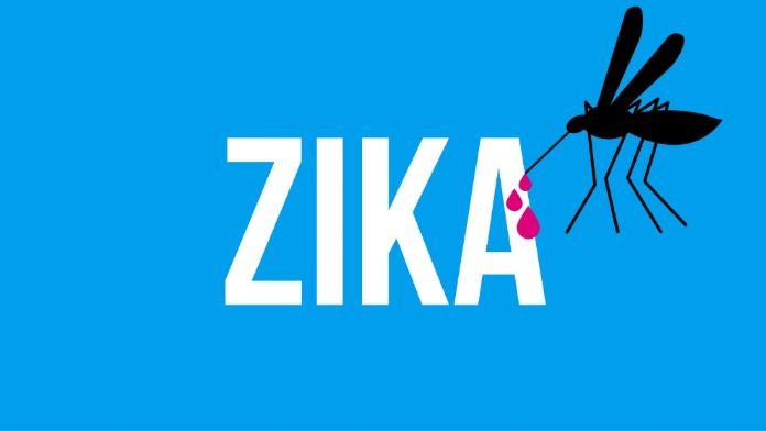 İspanya'da 'zika' paniği