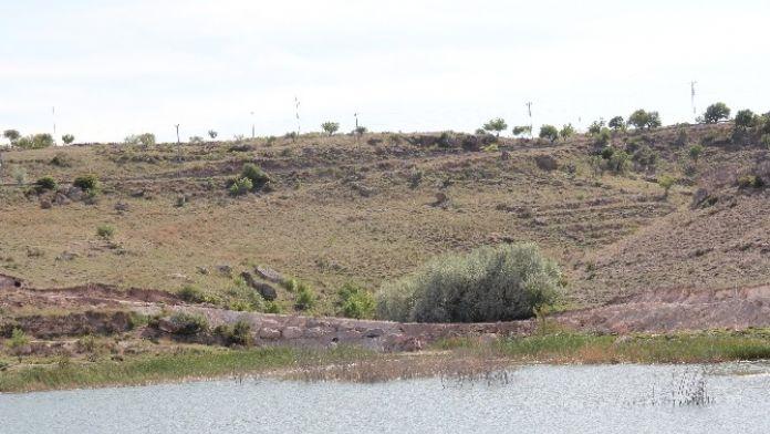 İncesu Belediyesi Baraj Ve Çevresinde Mesire Alanı Yapım Çalışmalarına Devam Ediyor