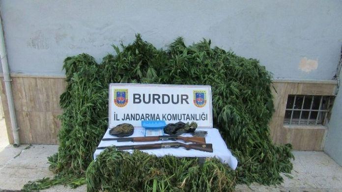 Bucak'ta Uyuşturucu Operasyonu