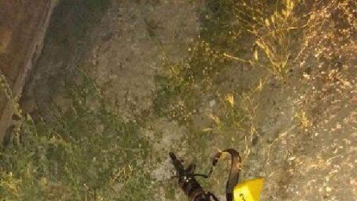 Siirt'te çatışma: 1 PKK'lı öldürüldü, 1 astsubay yaralı