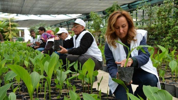Bahçıvan Adayları Sahaya İndi