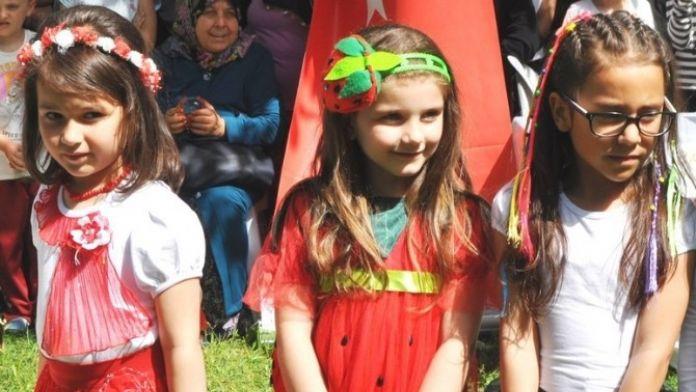 Çilek Tadında Festival