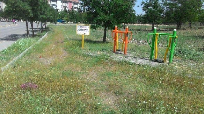 Mahalle Parkı Bakımsızlıktan Kullanılamıyor