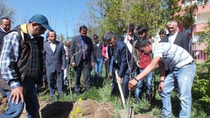Umut Çiçekleri Komisyonu Meyve Ağaçlarını Toprakla Buluşturdu