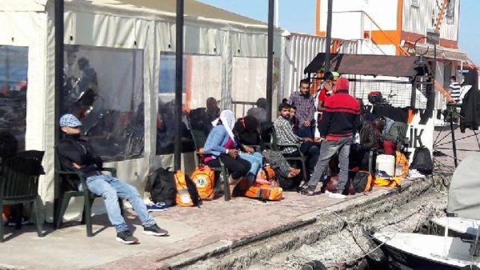 Dikili'de 42 mülteci yakalandı