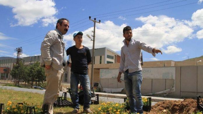 Bitlis Belediyesi Peyzaj Çalışmalarına Başladı