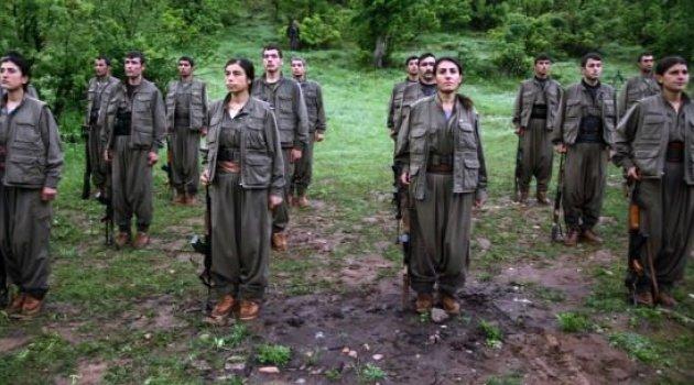 Nusaybin'de 495 PKK'lı Etkisiz Hale Getirildi