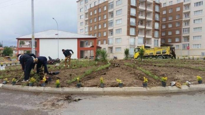Seydişehir'in Caddeleri Çiçek Bahçelerine Dönüyor
