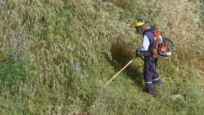 Belediyeden Boş Arazilerde Yabani Ot Temizliği