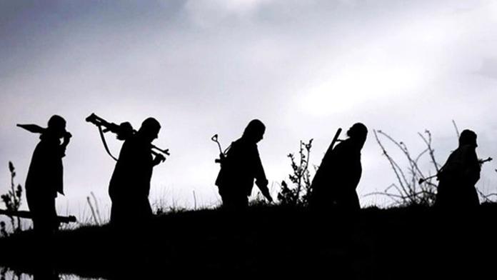 Nusaybin'de PKK Operasyonu Yapıldı
