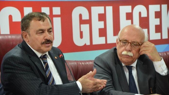 Bakan Eroğlu: 'Almanya'nın Kararı Yok Hükmündedir'