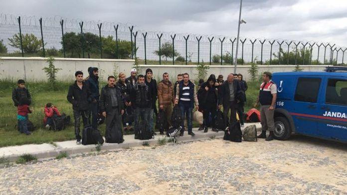 Tam 173 kaçak göçmen yakalandı