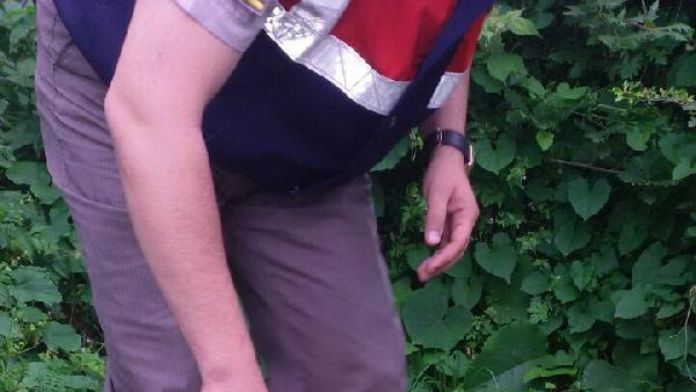Ormana ekilen hintkenevirleri imha edildi