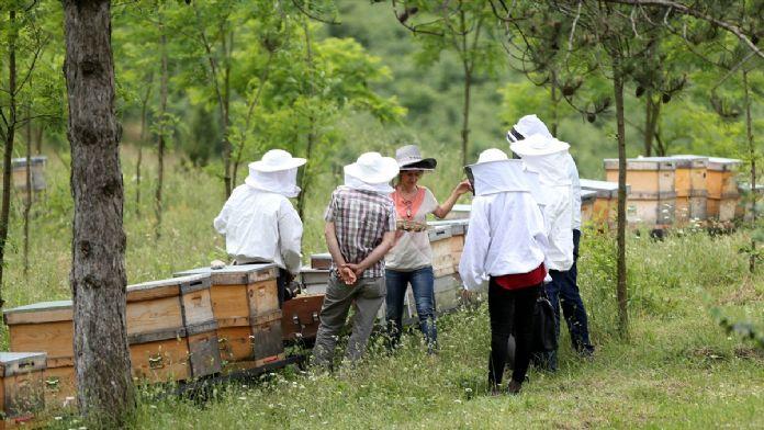 Ramazanda arı ürünleri tüketilmesi tavsiyesi