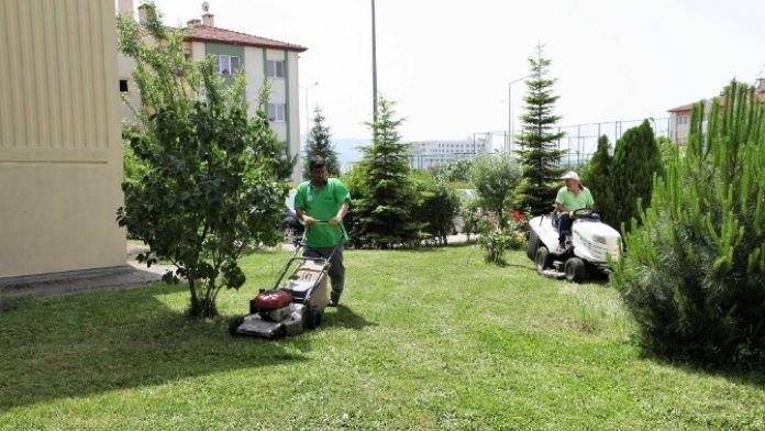 Başiskelede Park Bakım Ve Revize Çalışmaları Devam Ediyor