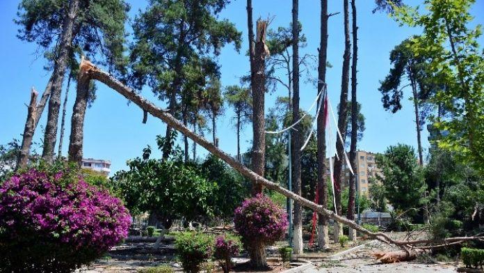 Tarsus Kültür Parkı'nda Facianın Eşiğinden Dönüldü
