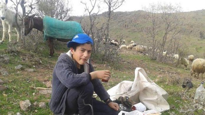 TEOG Türkiye Birincisi Yine Çemişgezek'ten