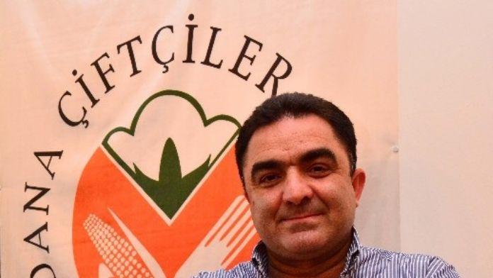 Adana'da Buğday Hasadı Tamamlandı