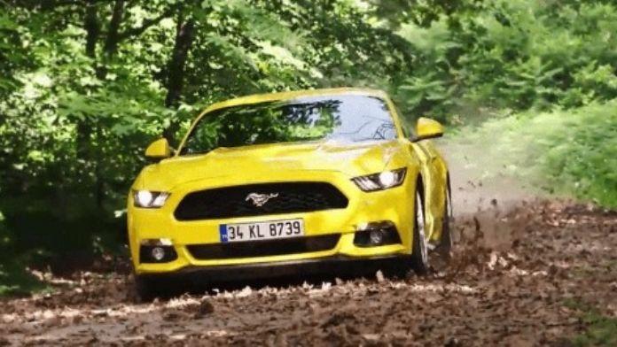 Ford Türkiye'den Babalar Günü Kampanyası