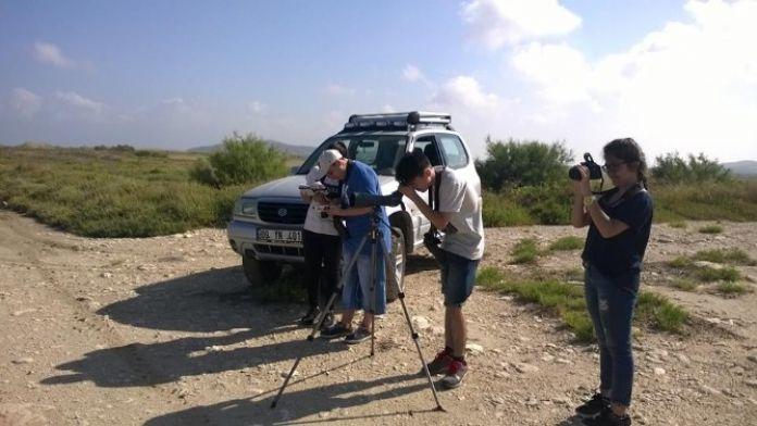 Didim'de Kuş Gözlemcileri Son Etkinliğini Yaptı