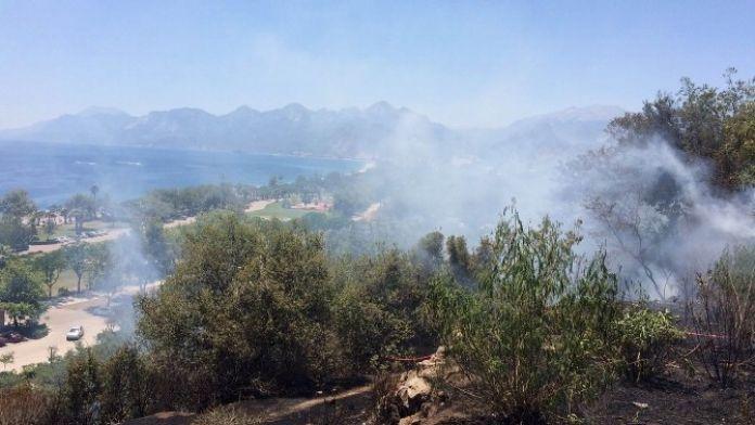Konyaaltı Beach Park'ta Orman Yangını