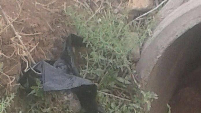 Vatandaşın ihbarı bombalı eylemi önledi