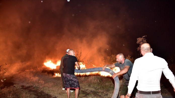 Bodrum'daki makilik alanda çıkan yangın