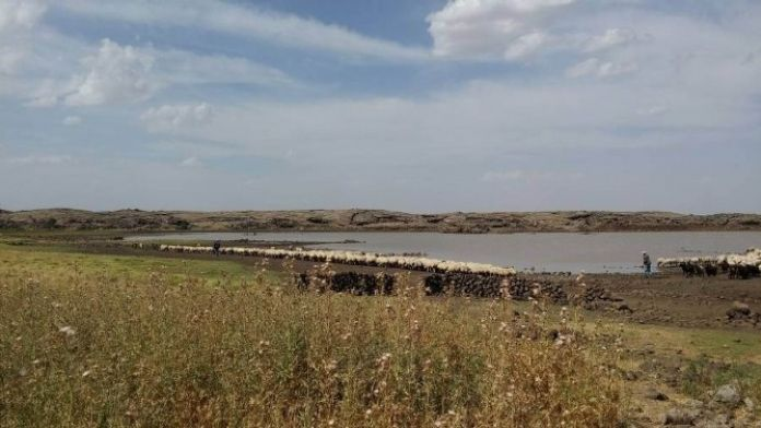 Büyükşehir, Gölet Yapım Ve Onarım Çalışmalarını Sürdürüyor