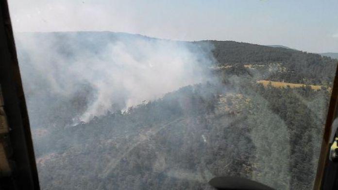 Mustafakemalpaşa'da orman yangını