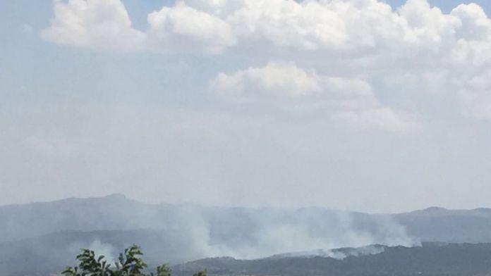 Zorda kalan teröristler ormanlık alanı ateşe verdi