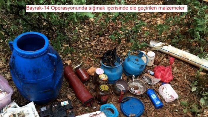 Diyarbakır Lice'de geniş çaplı operasyon !