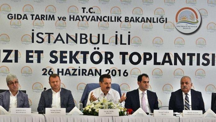 İstanbul İli Kırmızı ET Sektör Toplantısı