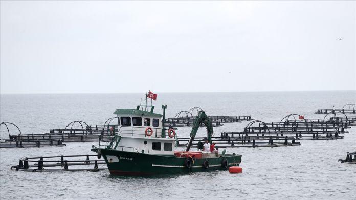 Balık çiftliklerine sahil güvenlikten sıkı denetim