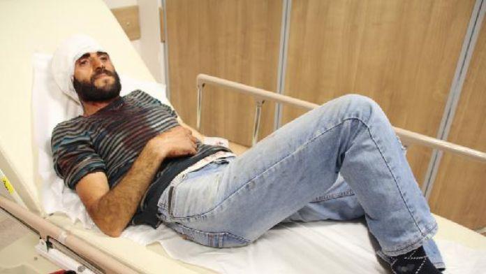 Şavşat'ta ayı saldırdı: 1 yaralı